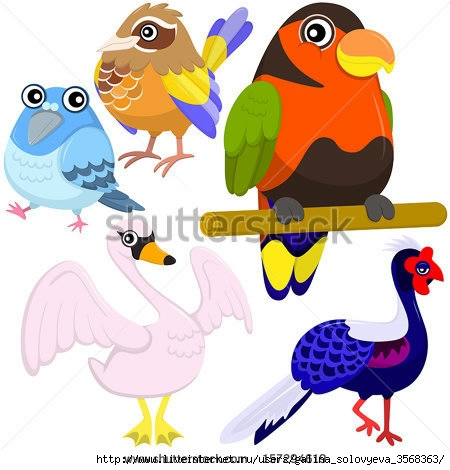 stock-vector-five-colorful-cute-birds-with-white-background-157294619 (450x470, 114Kb)