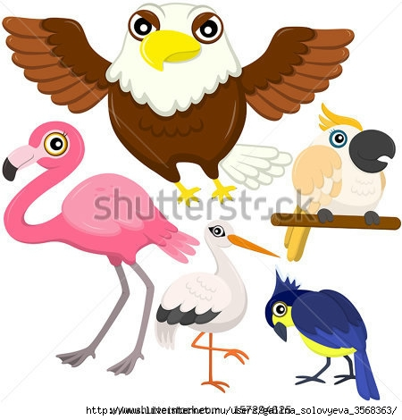 stock-vector-five-colorful-cute-birds-with-white-background-157294625 (450x470, 109Kb)