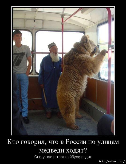 http://img1.liveinternet.ru/images/attach/c/10/109/369/109369309_1390488073_demotivatoruy8.jpg