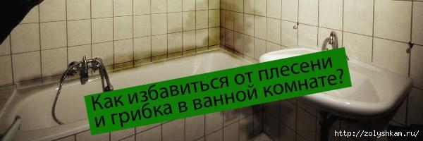 1352284330_kak-izbavitsya-ot-pleseni-i-gribka-v-vannoy-komnate (600x200, 79Kb)