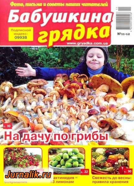 2920236_1390496277_babushkinagryadka11122013 (432x600, 189Kb)