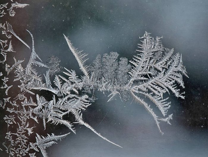 мороз на стекле фото 7 (700x528, 300Kb)