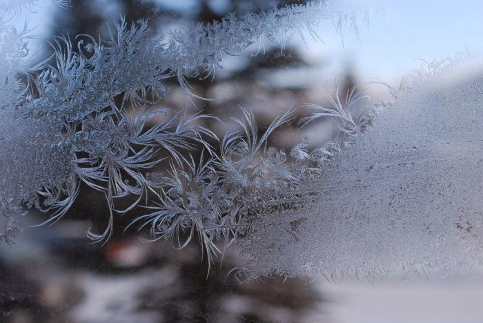 мороз на стекле фото 17 (700x468, 256Kb)