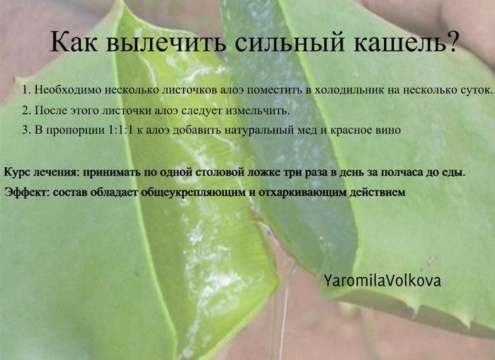 4716146_kakvilecitsilniykasel (700x508, 454Kb)