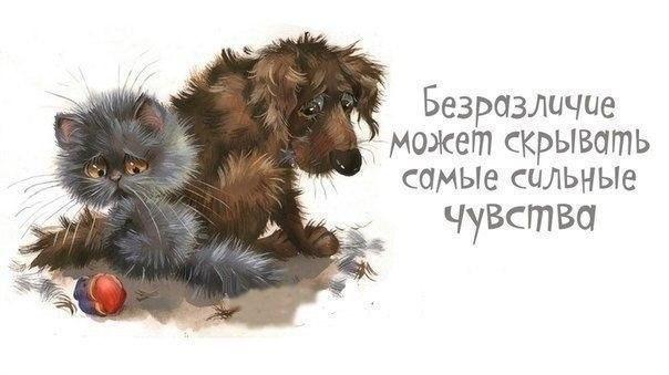 1390331464_frazochki-2 (604x339, 85Kb)
