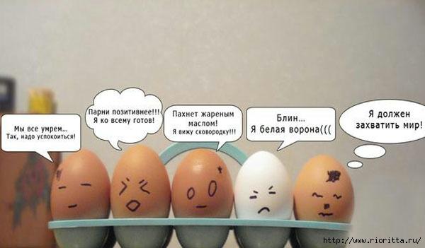 яйца (2) (600x351, 95Kb)