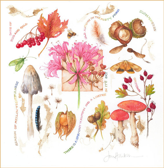 1306344705_www.nevsepic.com.ua_autumn_garden_nov07_copy_redcopy (567x580, 279Kb)