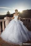 Превью свадьба40 (464x700, 193Kb)