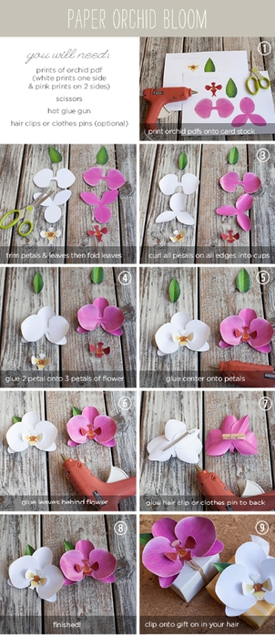PaperOrchidTutorial (302x700, 197Kb)
