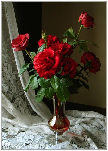 144 розы (429x600, 218Kb)