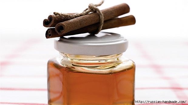 мед с корицей (620x345, 108Kb)