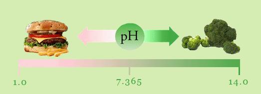 PH1 (523x189, 16Kb)