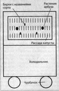 171-196x300 (196x300, 19Kb)