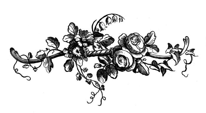 Винтажные изображения для творчества. Орнамент (7) (700x384, 88Kb)