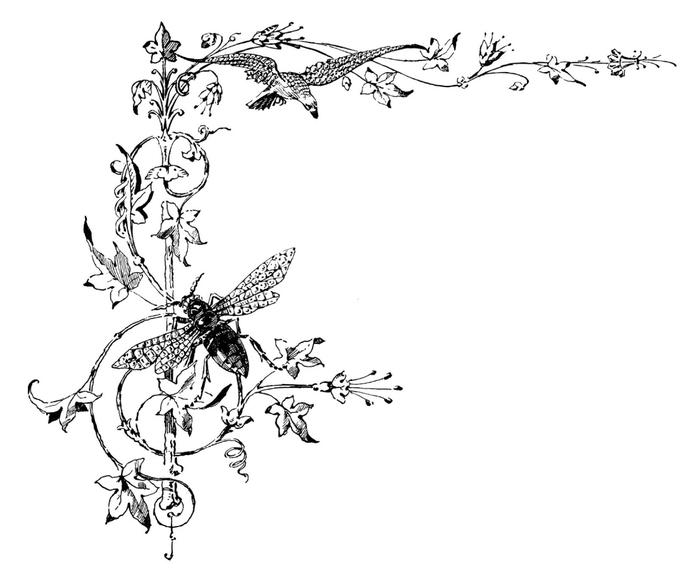 Винтажные изображения для творчества. Орнамент (9) (700x585, 93Kb)