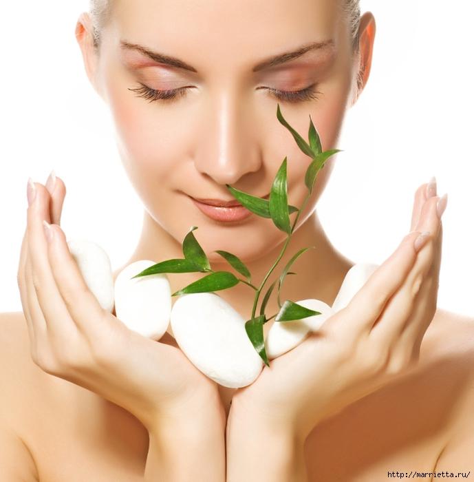 Натуральная косметика как основа здоровой кожи лица и волос2 (689x700, 223Kb)