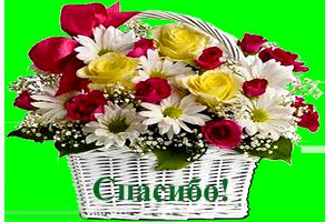 http://img1.liveinternet.ru/images/attach/c/10/109/602/109602557_k7.png