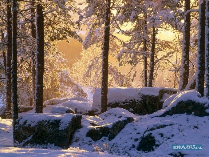 51857894_1226119876_winters_79 (680x510, 282Kb)
