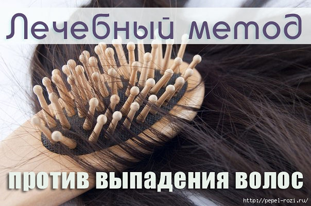 4403711_getImage (604x401, 163Kb)