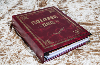 книга (350x226, 136Kb)