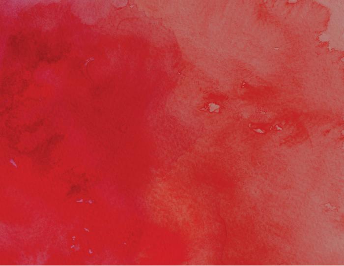 Розы из бумаги ко дню Святого Валентина. Шаблоны для распечатки (10) (700x541, 477Kb)