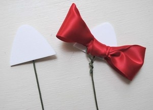 Кошечки из гвоздик. Замечательная идея букета ко Дню Святого Валентина (9) (300x216, 28Kb)