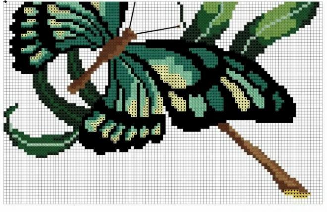 бабочка 3 b698016ab0 (660x428,