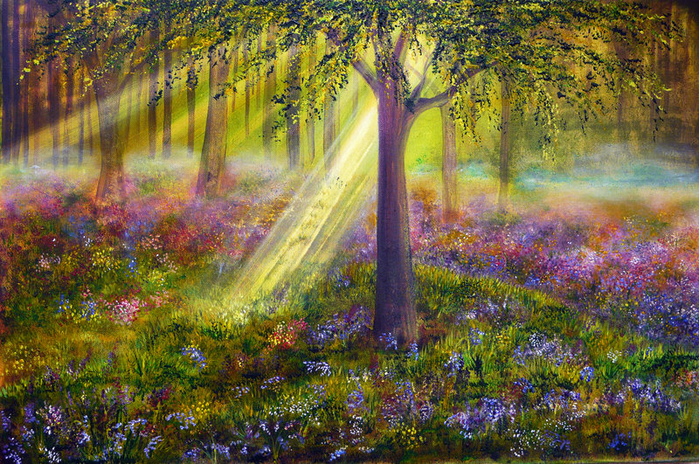 0000009_bluebell_woods (700x464, 631Kb)