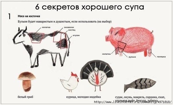 http://img1.liveinternet.ru/images/attach/c/10/109/682/109682699_large_UvQ0EIzeibI.jpg