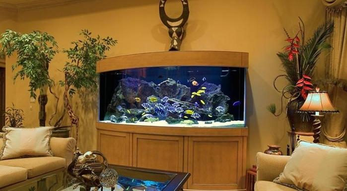 аквариум в интерьере (700x385, 193Kb)
