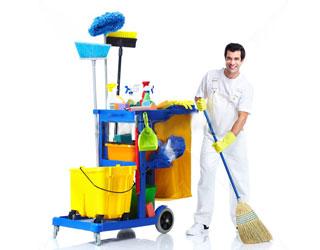 3180456_cleaninguborka (320x250, 16Kb)