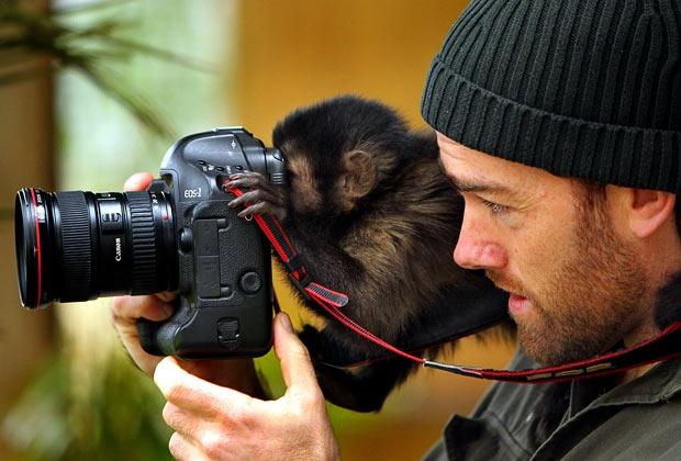 Умеете ли вы фотографировать?