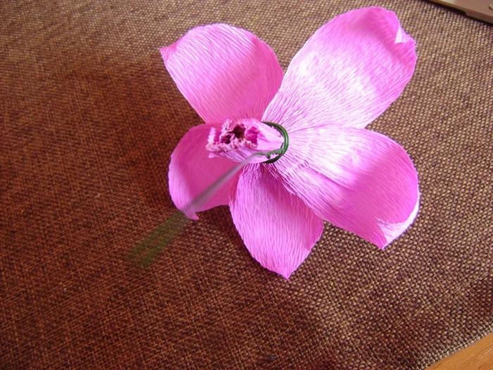 Орхидея из гофрированной бумаги. Мастер-класс (12) (700x525, 359Kb)