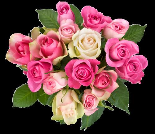 Resultado de imagen de фон цветы png