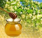 липа мед (167x150, 29Kb)