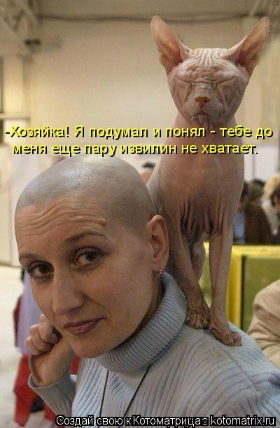 kotomatritsa_2 (400x611, 129Kb)