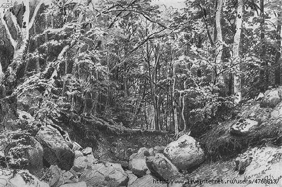 шишкинНа горе Кастель в окрестностях Алуштыic (550x364, 225Kb)