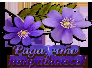 http://img1.liveinternet.ru/images/attach/c/10/109/903/109903225_zagruzhennoe__1_.png
