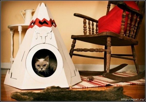 Подбираем уютное местечко для домашних животных
