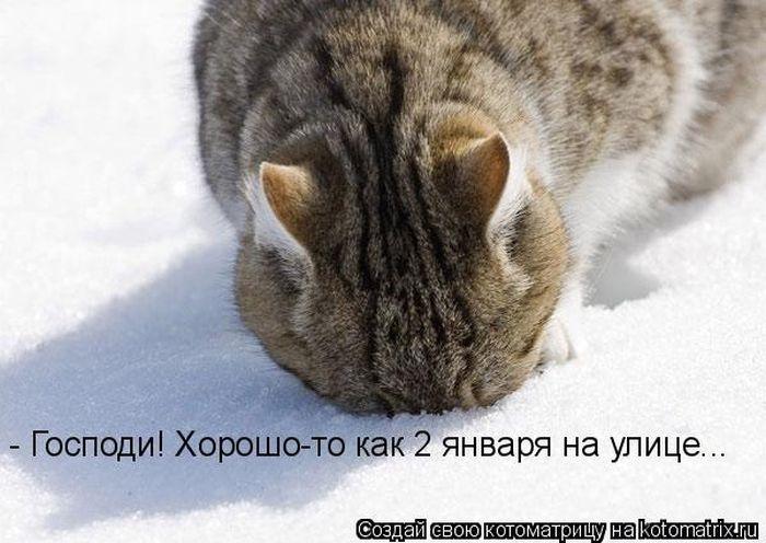 1391956620_cm_20140207_03612_025 (700x496, 165Kb)