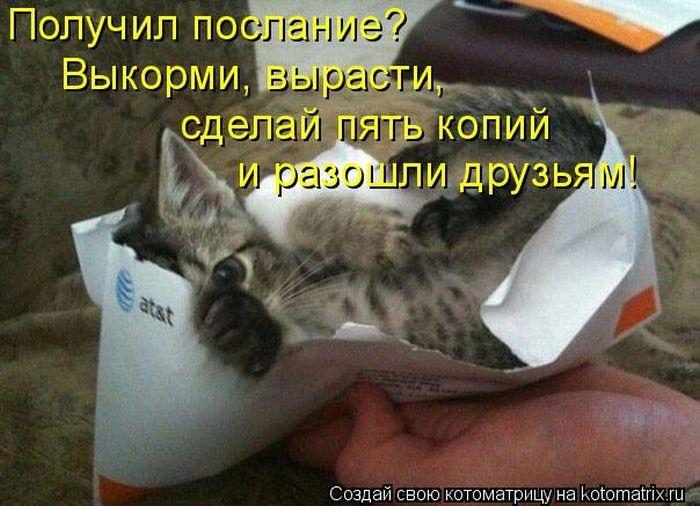 1391956621_cm_20140207_03612_024 (700x506, 201Kb)