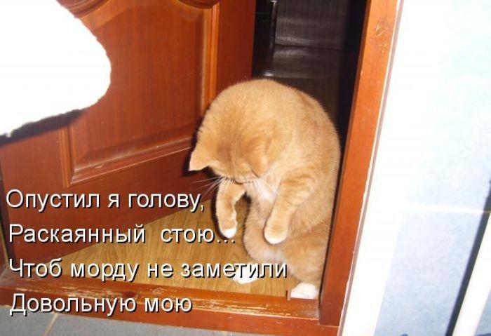 1391956624_cm_20140207_03612_001 (700x479, 145Kb)