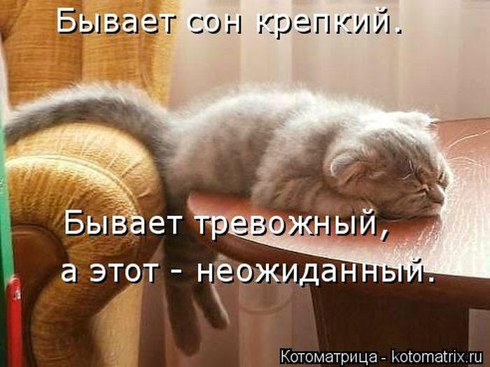 1391956633_cm_20140207_03612_015 (700x525, 183Kb)