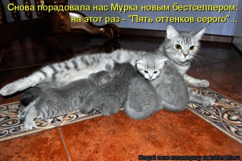ввьььвь (500x332, 167Kb)