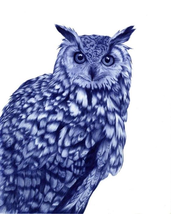 рисунки шариковой ручкой Художница Сара Эстридж 3 (562x700, 198Kb)