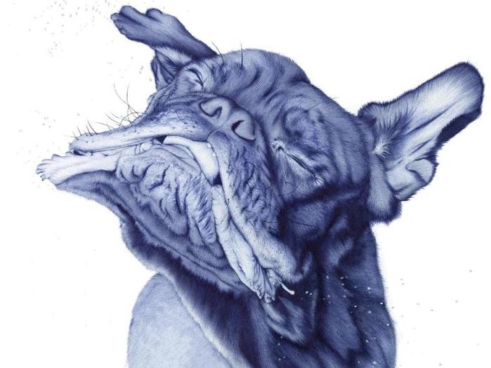 рисунки шариковой ручкой Художница Сара Эстридж 14 (700x524, 180Kb)