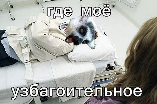 http://img1.liveinternet.ru/images/attach/c/10/109/994/109994565_5168425_BTGT_RCIAIvWyv.jpg
