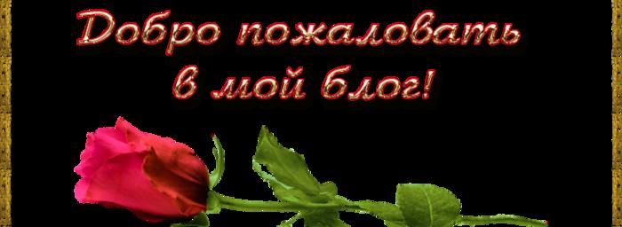 Безимени-1 (700x256, 150Kb)