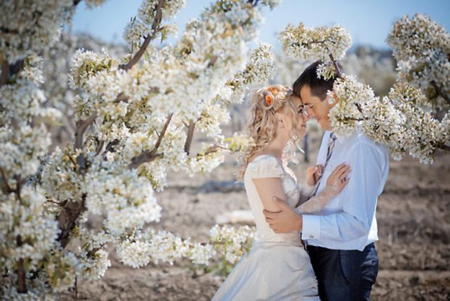 Удачный брак по сезону года/4059776_0d0bd1171492fa90c65916a0f4bee802 (640x428, 99Kb)