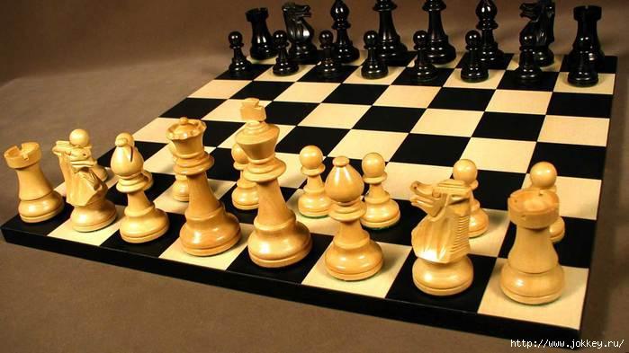 4554478_chess_shahmati (700x393, 149Kb)